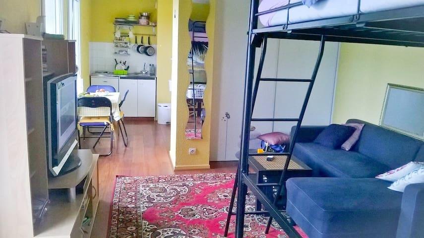 Chaleureux studio 5mn centre ville - Dijon - Byt