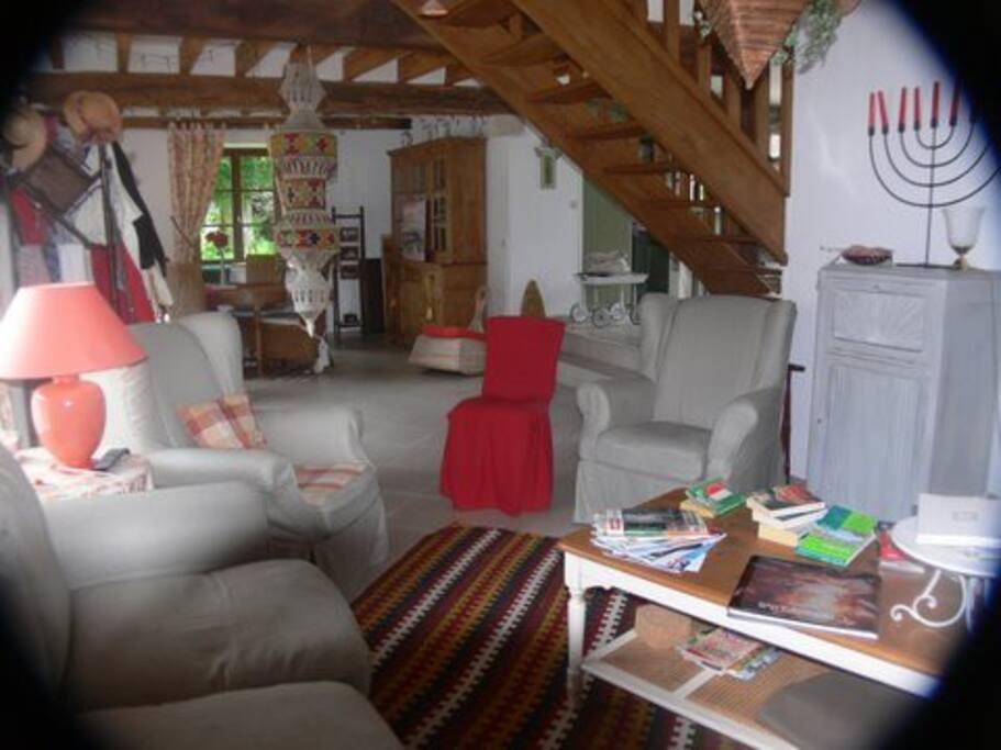 Grand salon de 45 m2 ouvrant sur la terrasse