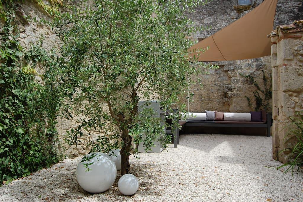 courtyard ~ cour ~ binnentuin