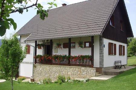 Apartment on hill - Poljanak - Flat