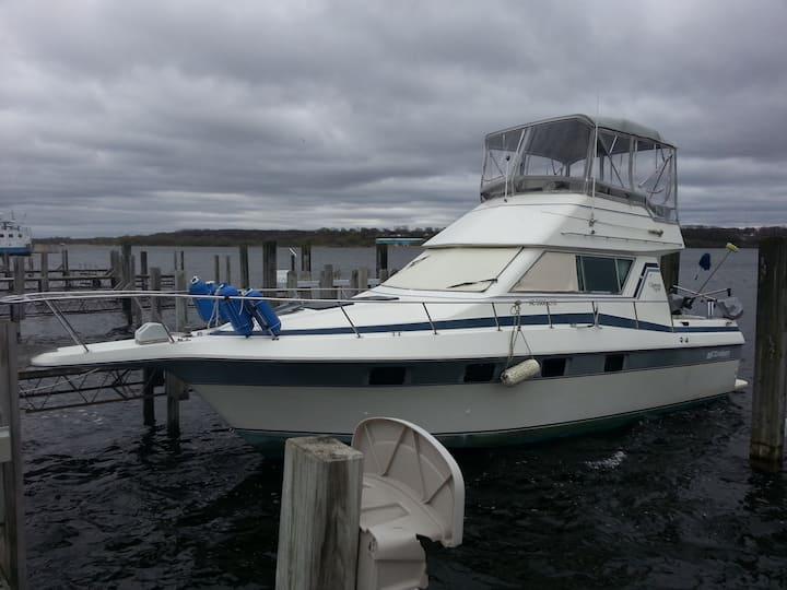 33 ft cruisers Motor Yacht On The Betsie Bay
