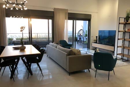 penthouse face to Mediterranean Sea