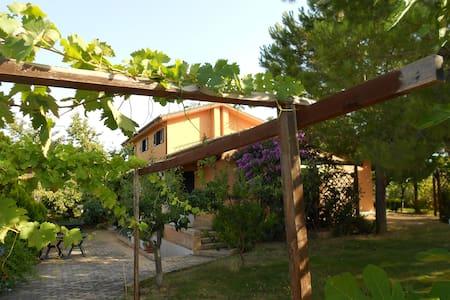 Bob's house - Città Sant'Angelo - วิลล่า