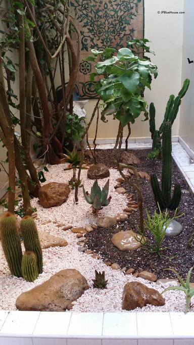 Vue du Jardin Japonisant de la chambre
