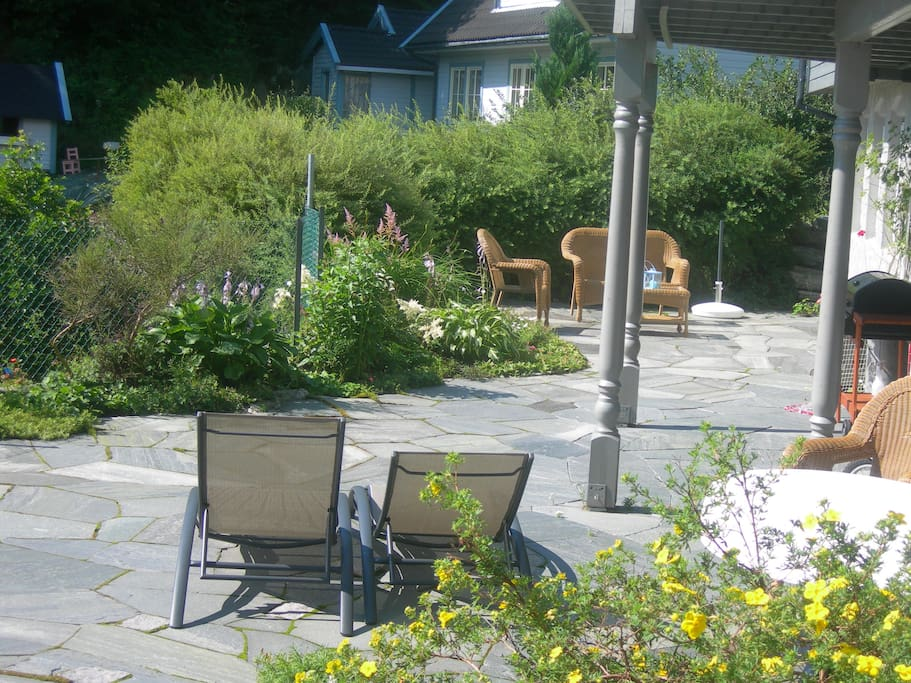 Lovely garden with sunbathing chairs