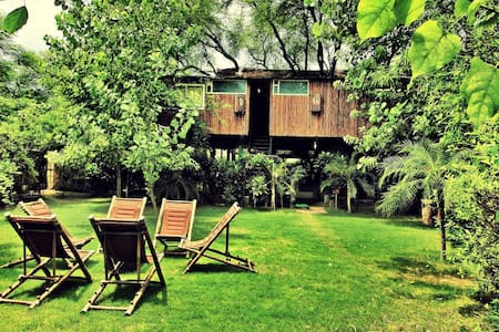 Tree House - Deluxe Nest - Jaipur - Treehouse
