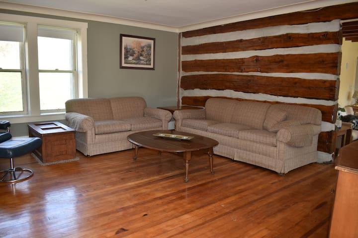Living Room #1 with sleeper sofa
