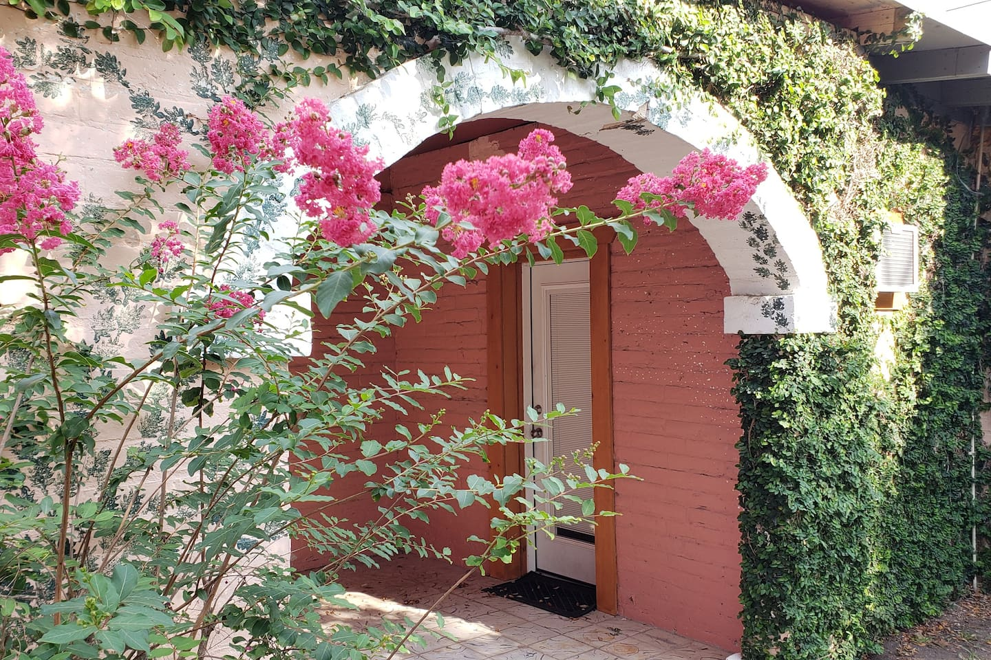 Crepe Myrtle always blooms from the middle to the end of July.