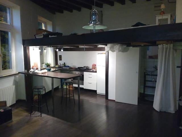 Appartement canut type loft ! Vue sur le Rhône - Caluire-et-Cuire - Loft
