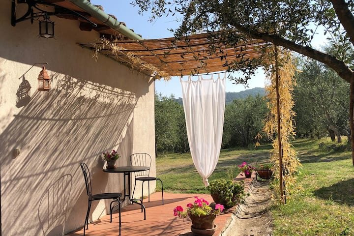 Country house Castel del Piano Tuscany