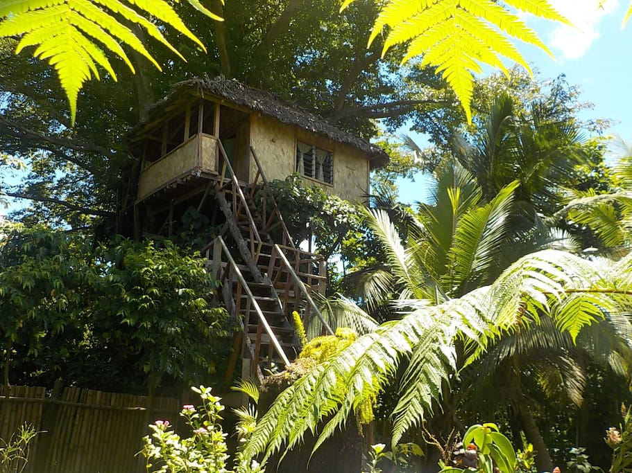 A front view of Tree house