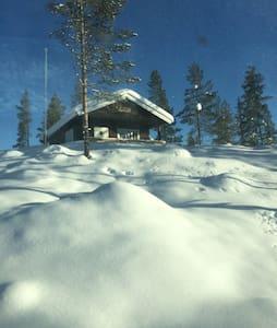 ARILDBU - Sommerhus/hytte