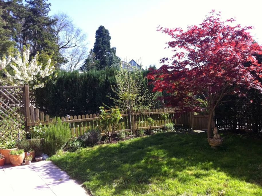 Jardin vue de la terrasse