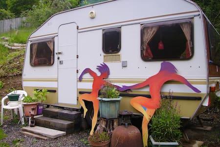 Barnstaple area.  Cosy retreat in woodland setting - Landkey