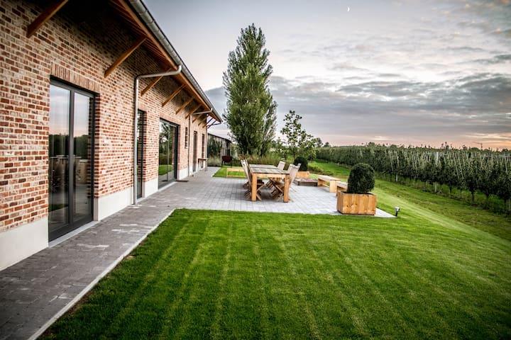 Hemels logeren tussen boomgaarden - Sint-Gillis-Waas - House