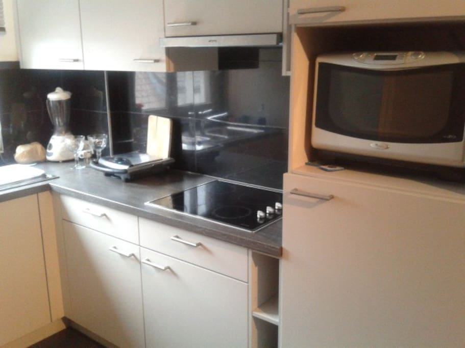 kitchen,microwave/oven, grill and big fridge