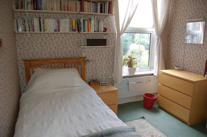 A comfortable, quiet single room - London - House
