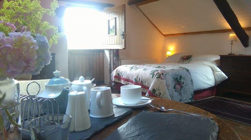 Y Granar @ Bythynnod Moel yr Iwrch Cottages