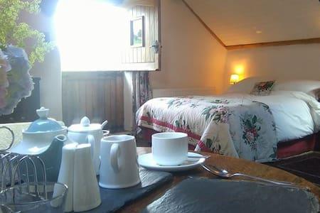 Y Granar @ Bythynnod Moel yr Iwrch Cottages - Conwy - Bed & Breakfast
