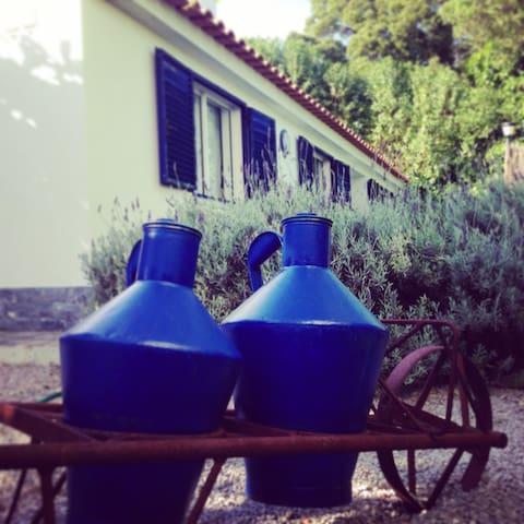 Casa Azul - Blue House - Oeiras - Ev
