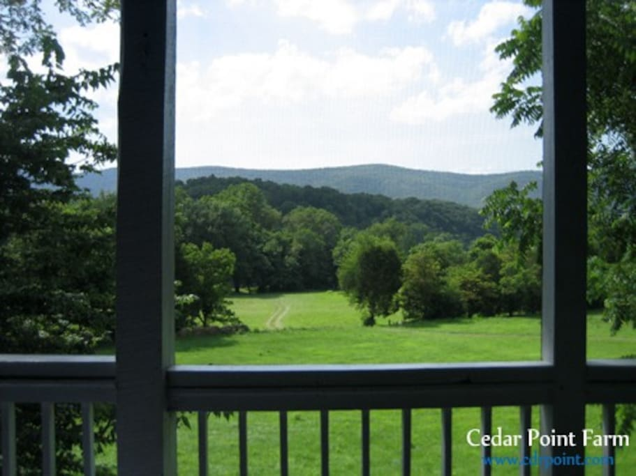Farmhouse scenery from the screened porch