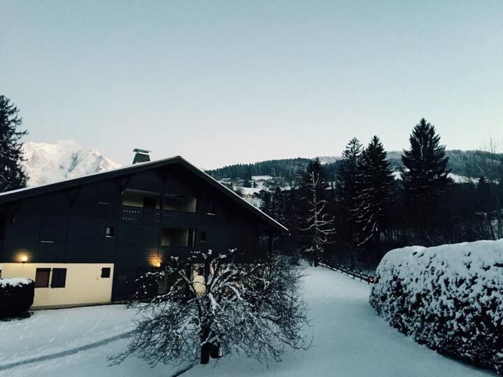 Appartement chaleureux vue sur Mont Blanc