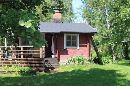 Real finnish sauna experience! - Cabin
