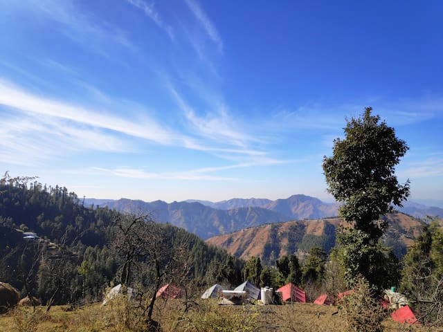 2 Camps | Apple Orchard | Himalayan View