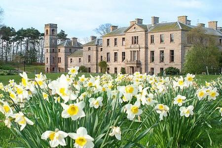 Striking Victorian Mansion House - St Andrews - ที่พักพร้อมอาหารเช้า