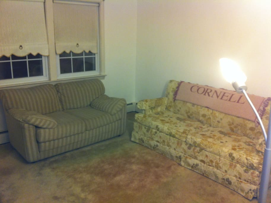 Guest Bedroom #1. The sofa with the Cornell blanket is a pull out, full size. Flat and fitted linens, as well as pillows, will be provided.