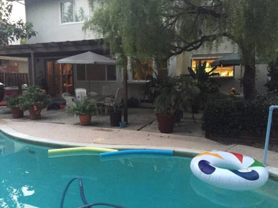 Our pool, covered patio and where we BBQ!