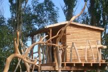 Dein Baumhaus