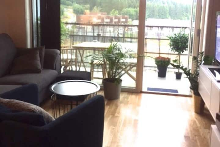 Newly built apartment 20 minutes from Trondheim
