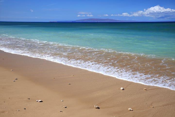 long walking beach