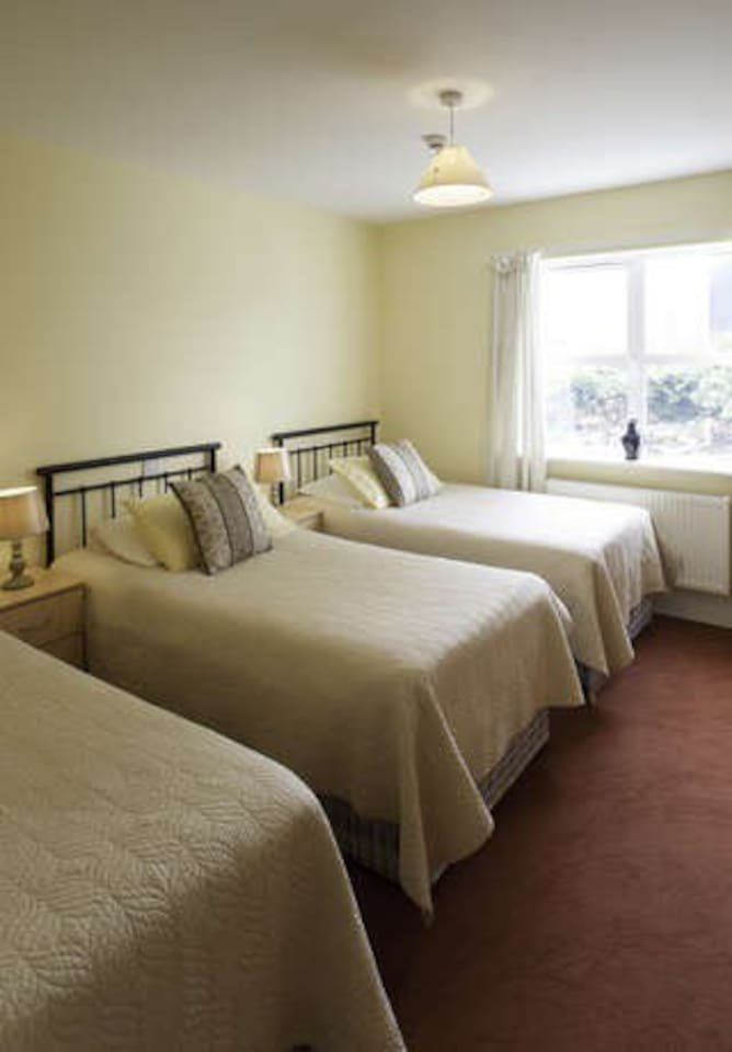 1 Double Bed and 2 Single Beds 4 persons. Walk in Wet Room Power Shower spacious Ensuite Room with TV and Tea Coffee WiFi complimentary.