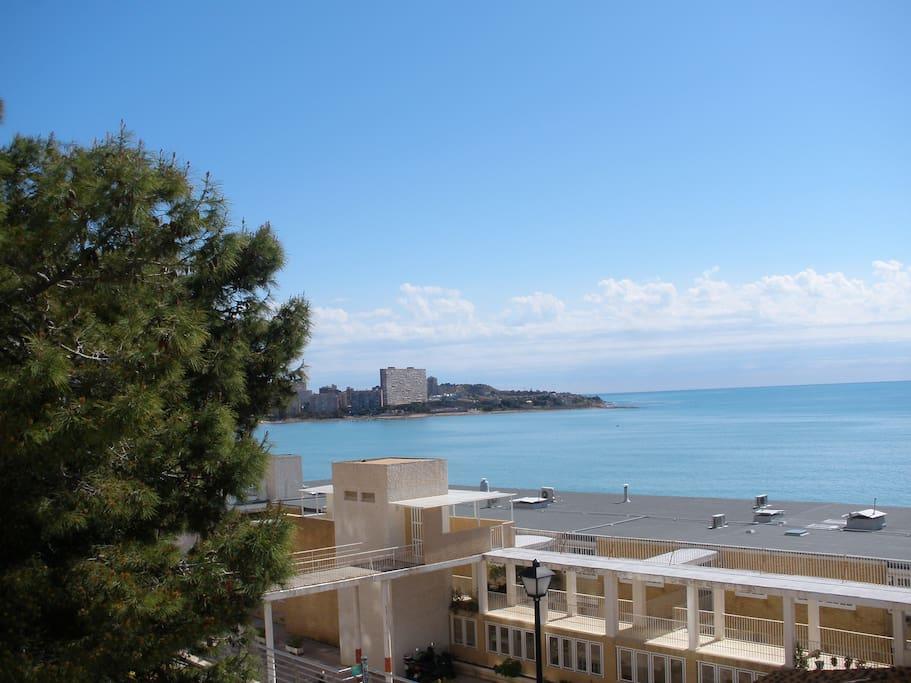 Habitaci n en la playa de alicante bungalows louer alicante valence espagne - Alquilo habitacion en alicante ...