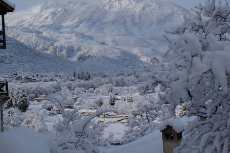 Πετρόκτιστη μεζονέτα στους πρόποδες του Παρνασσού - Polydrosos