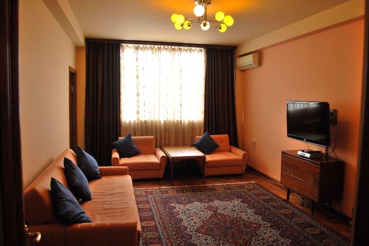 Ararat view apartment in center - Yerevan - Flat
