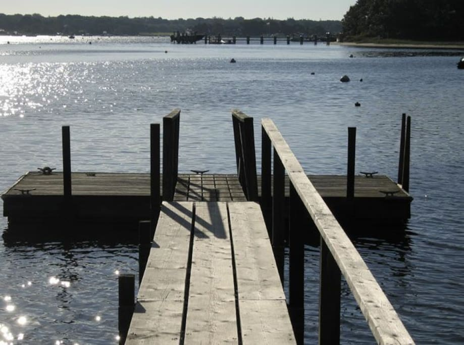 Pier and float