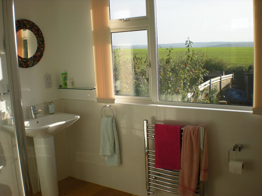 Ensuite bathroom with view.