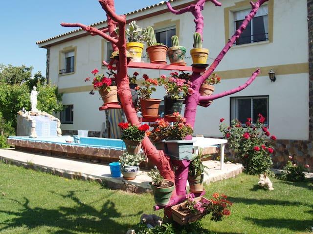 Casa rural Calvario13 - Boquiñeni - House