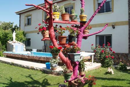 Casa rural Calvario13 - Boquiñeni - Huis