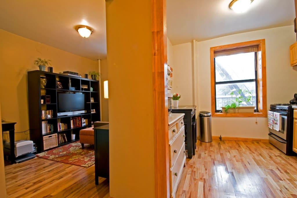 Williamsburg 1 Bedroom Apartment