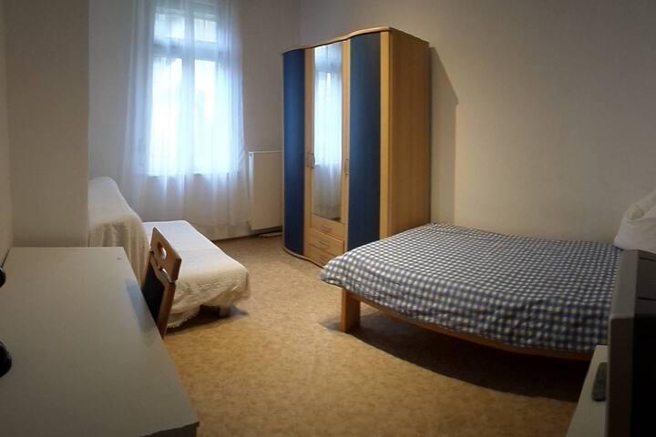 EZ Zimmer Landau/Pfalz Zentrum - Landau in der Pfalz - Apartment