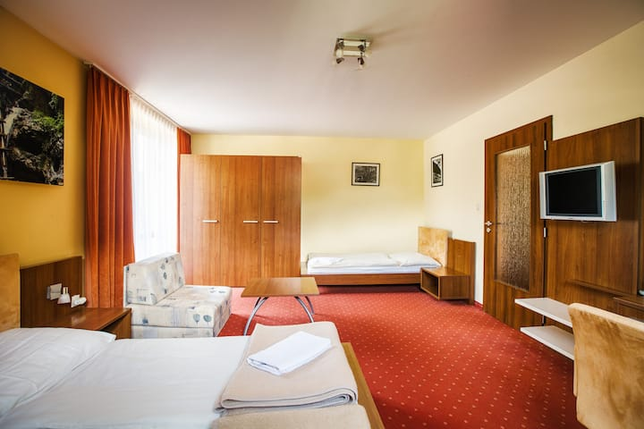 Spacious room in a picturesque setting 202