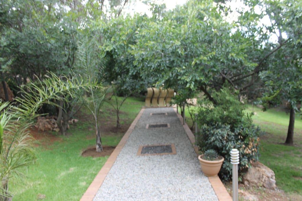Garden, View 1