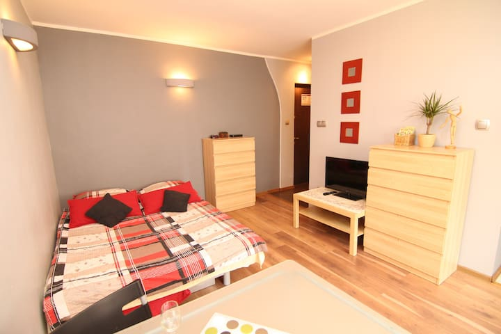 (1) Cosy studio apartment / OLD TOWN - Wrocław - Apartment