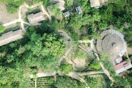Temple Tiger Green Jungle Resort