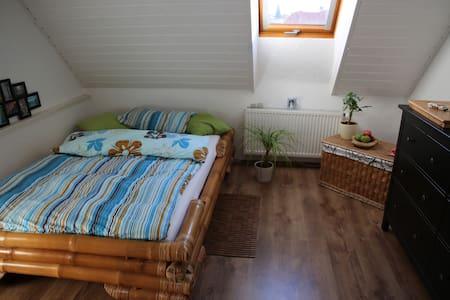 Gemütliches Zimmer in Maisonettewohnung im Altbau! - Neustadt an der Weinstraße - Apartment