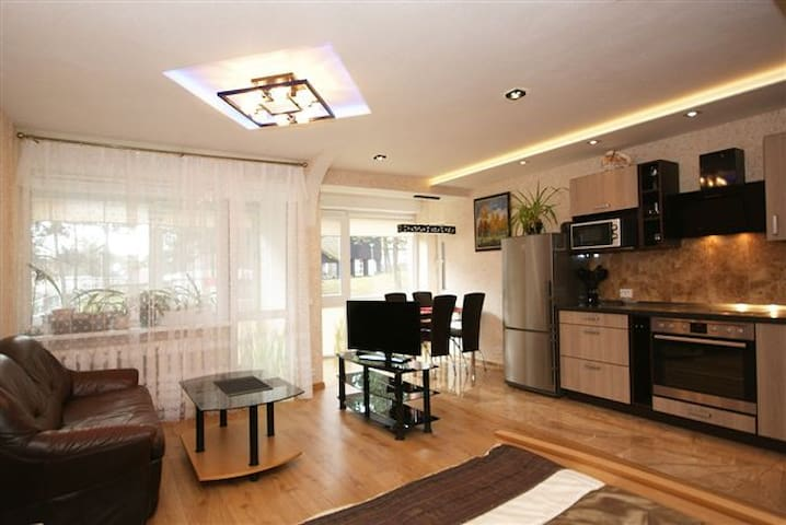 Spacious apartment for 2-4 people